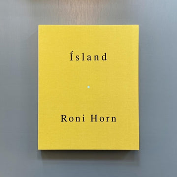 Horn Roni - Islands / To place : Becoming a landscape - Ginny Williams 2001