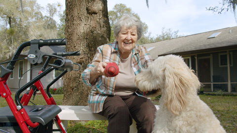 elderly woman dog with a ball