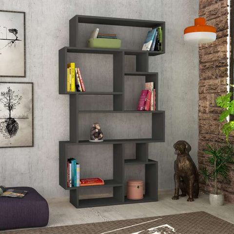 Carry Bookcase