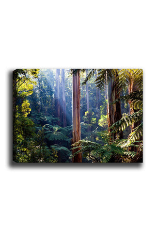 Decorative Canvas Painting (70x100) - 21-Canvas Print-[Famous places, nature, portrait, history, art, gifts, christmas, new year, kitchen, bathroom, office]-Modern Furniture Deals