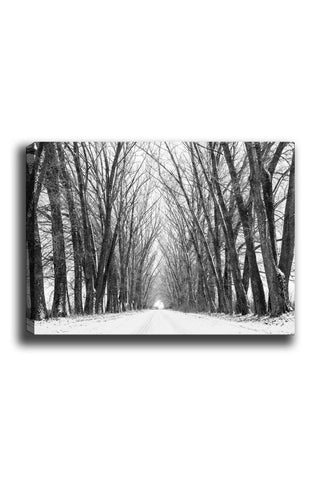 Decorative Canvas Painting (70x100) - 22-Canvas Print-[Famous places, nature, portrait, history, art, gifts, christmas, new year, kitchen, bathroom, office]-Modern Furniture Deals