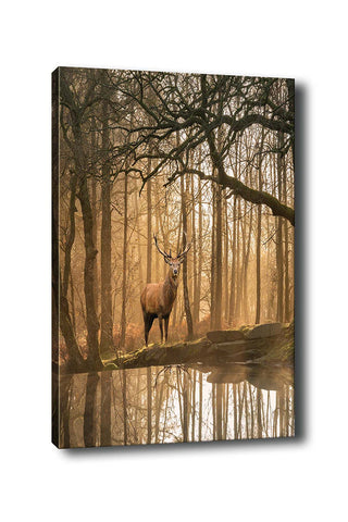 Decorative Canvas Painting (70x100) - 45-Canvas Print-[Famous places, nature, portrait, history, art, gifts, christmas, new year, kitchen, bathroom, office]-Modern Furniture Deals