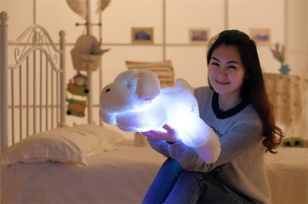 """Light Me Up"" Glowing Dog Teddy"