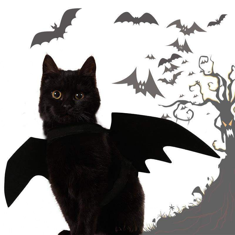 [SOLD OUT] Easy Batwings Cat Halloween Costume