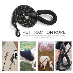Highly Reflective Rope Dog Lead
