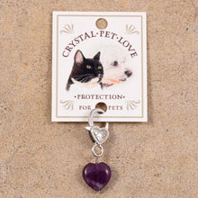 Load image into Gallery viewer, pet crystal for collar purple amethyst