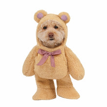 Load image into Gallery viewer, teddy bear pet costume comfortable