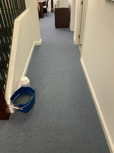 Load image into Gallery viewer, Carpet Cleaning Services