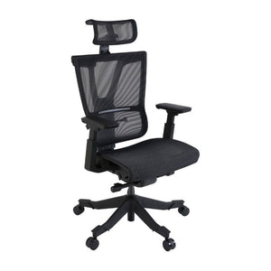 Flexispot 4D Fully Adjustable Ergonomic Office Chair OC9B