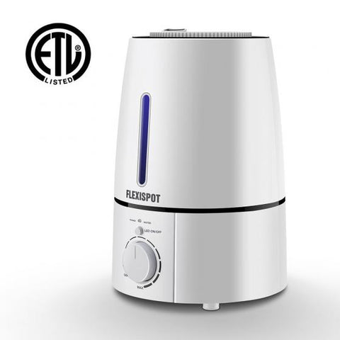 Image of Flexispot Cool Mist Humidifier HM2 - 3L