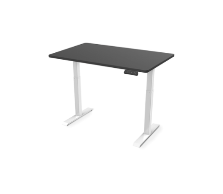 Image of Flexispot Seiffen Electric Height Adjustable Standing Desk with Rectangular Top