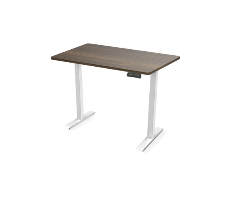 Flexispot Electric Height Adjustable Standing Desk EC3