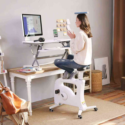 Flexispot Sit-Stand-Move Solution: Desk Riser + Desk Bike
