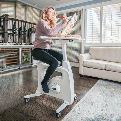 Flexispot Home Office Height Adjustable Cycle Desk Bike