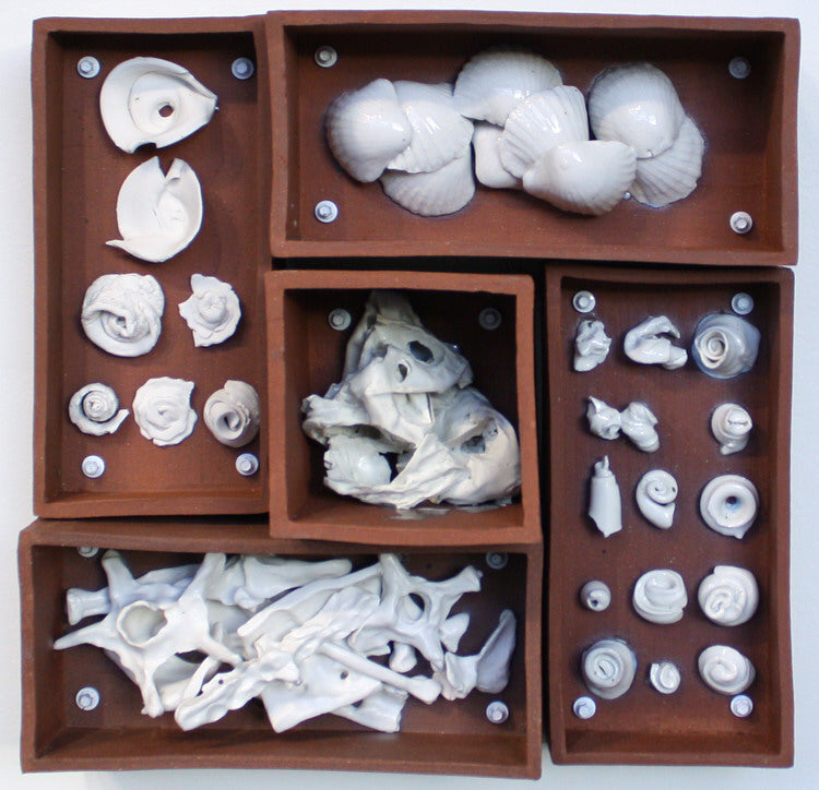 Evan Blackwell Artwork 'Relics of Experience: Shells & Bones' | Available at fosterwhite.com