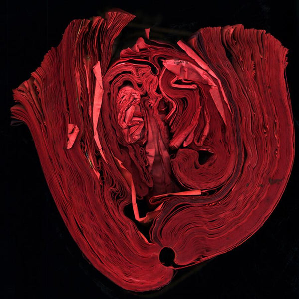 Cara Barer - Heart - 24 X 24 in. Archival Pigment Print Mounted on Archival Substrate, Framed in Black with Plexiglass, - Foster White Gallery