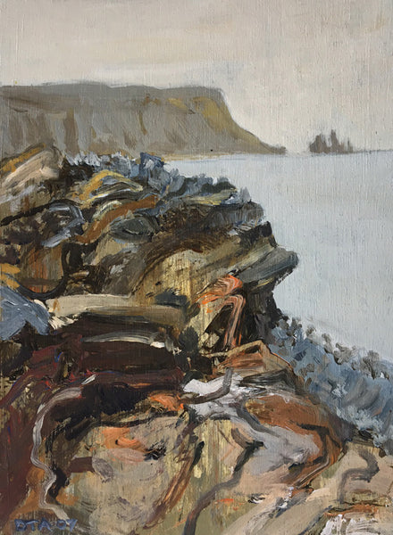 David Alexander Artwork 'SW, Shore, Iceland' | Available at fosterwhite.com