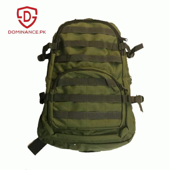 Buy 50-Liter Backpack (Green) at Dominance
