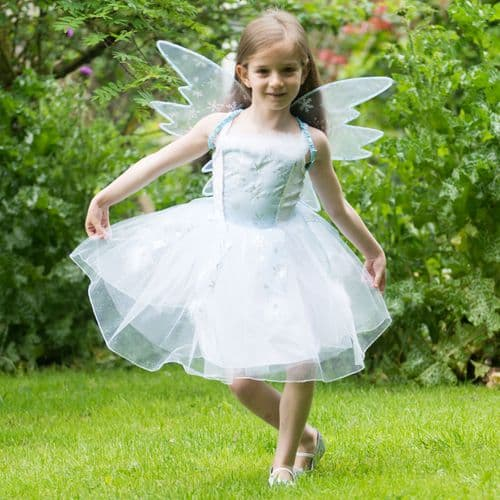 Frozen fairy dressing up  6-8 year