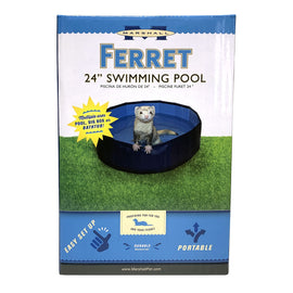 Ferret Swiming Pool