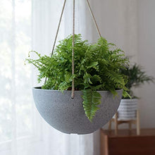 "Load image into Gallery viewer, Hanging Planter Flower Plant Pots - 10"" Set of 2 - Lucia Gardens"