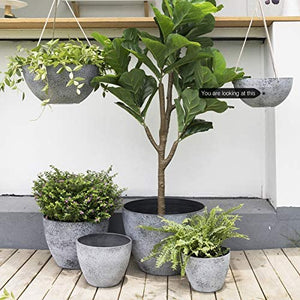 "Hanging Planters for Indoor Plants - 10"" Set of 2 - Lucia Gardens"