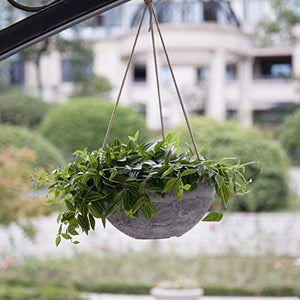 "Hanging Planter Flower Plant Pots - 10"" Set of 2 - Lucia Gardens"