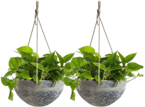 Hanging Planter Flower Plant Pots - 10