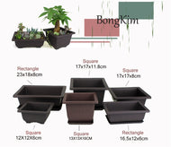 Square Flower Pot + Tray Bonsai Nursery Set - Lucia Gardens