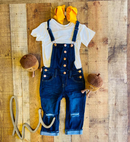 BLUEBERRY DENIM DISTRESSED OVERALLS
