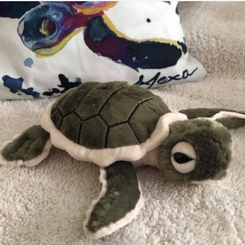 GREEN PLUSH SEA TURTLE