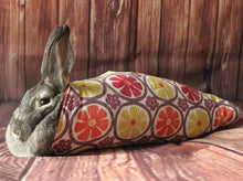 Load image into Gallery viewer, Lapin dans son enveloppe ou bunny wrap
