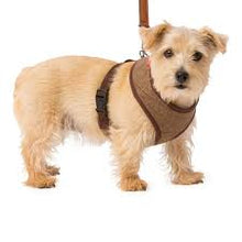 Load image into Gallery viewer, House of Paws Tweed Memory Foam Harness