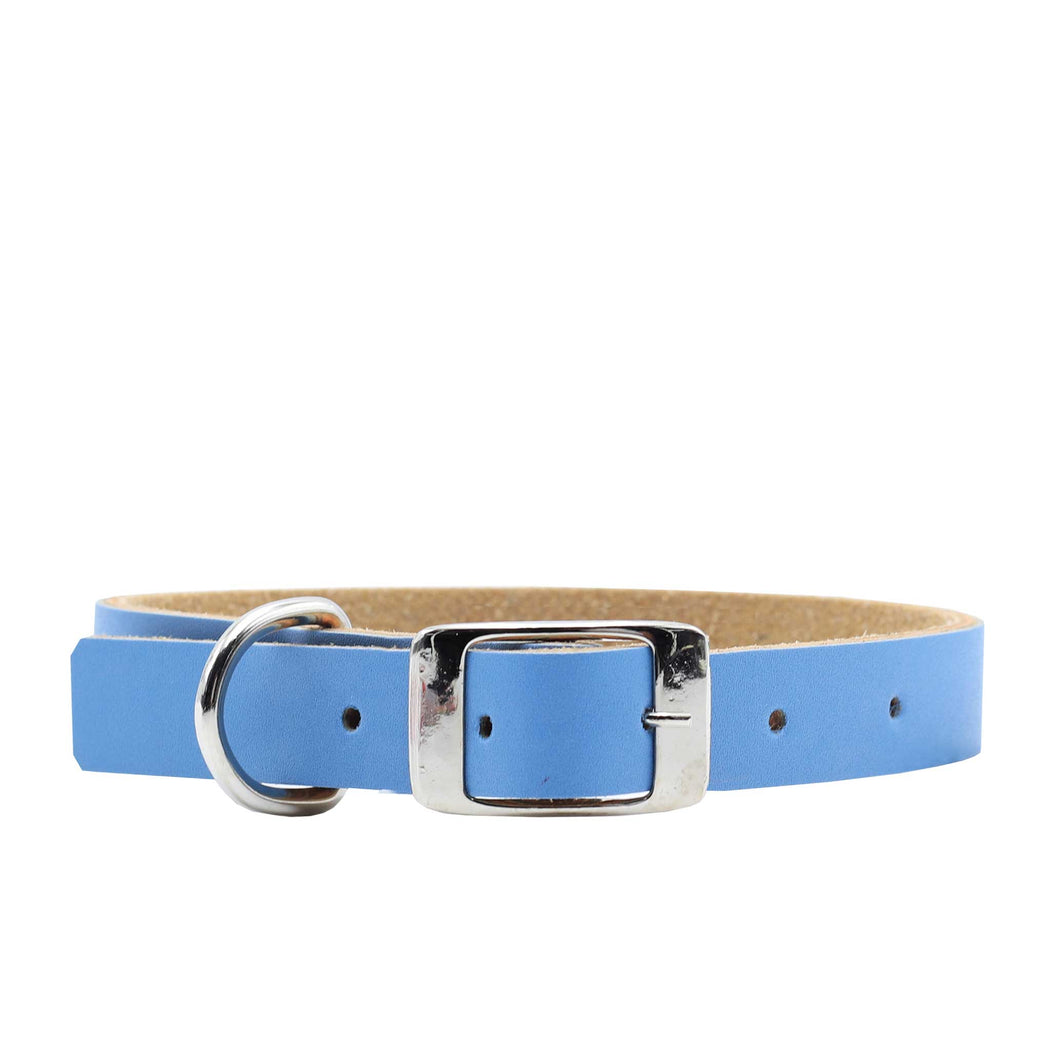 Collar -  Fun Colors - Baby Blue
