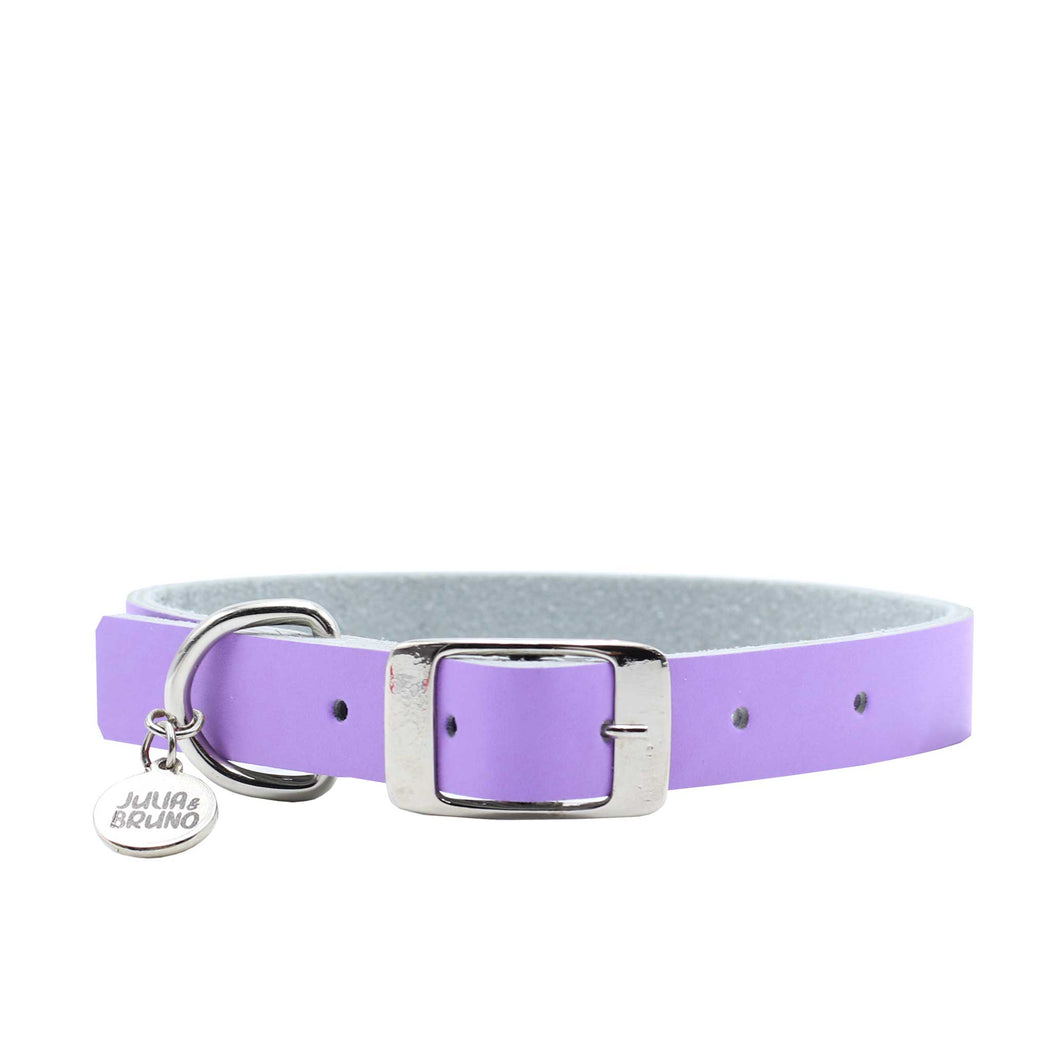 Collar - Fun Colors - Lila