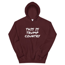 Load image into Gallery viewer, This is Trump Country Hoodie - Real Tina 40