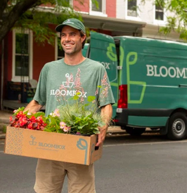 Plants being hand delivered in open-top box