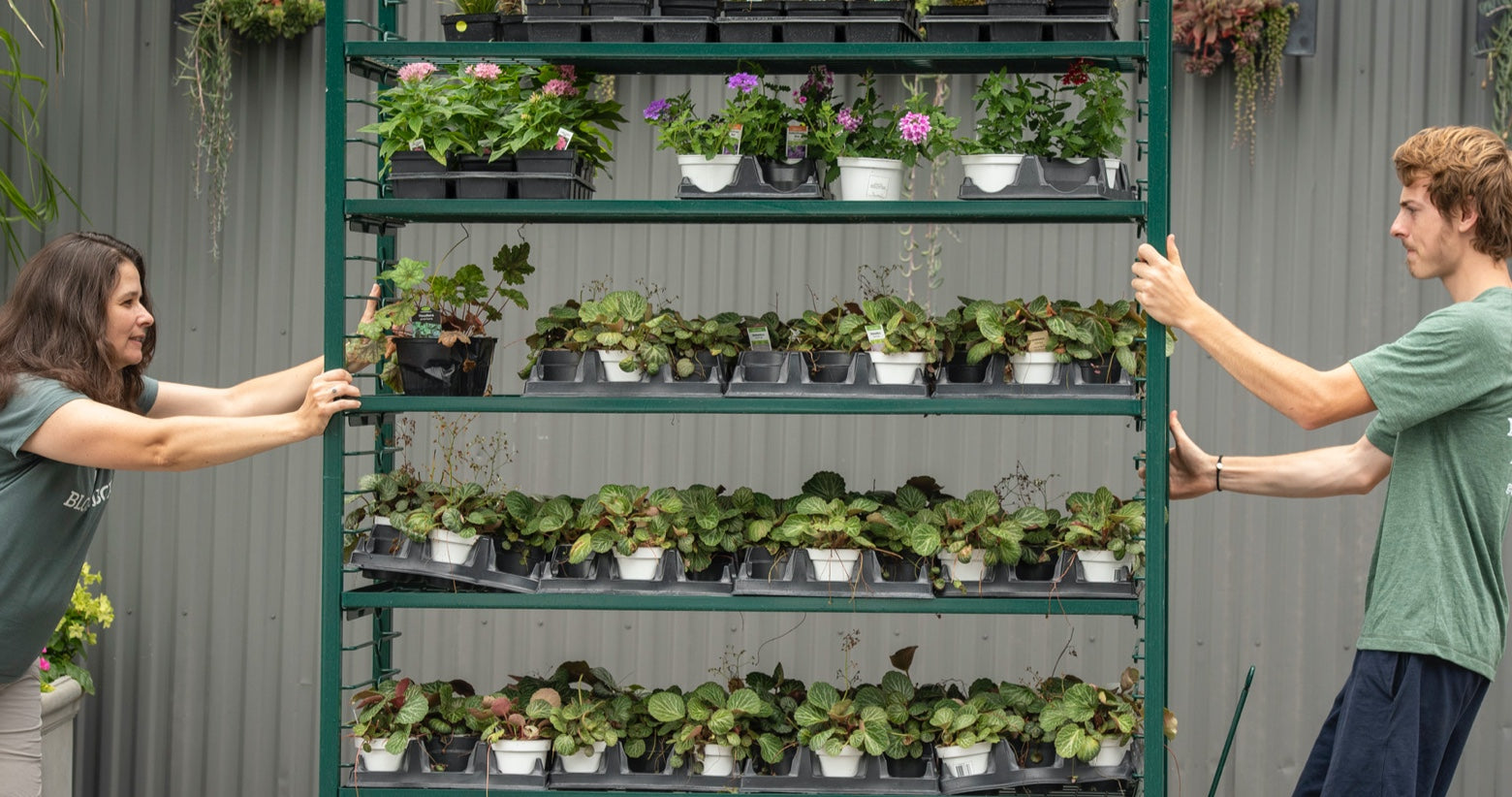 BloomBox employees pushing multi-tier cart of native plants