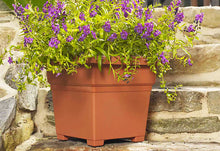 Load image into Gallery viewer, Countryside Tub Planter