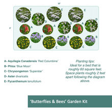Load image into Gallery viewer, 'Butterflies & Bees' Garden Kit