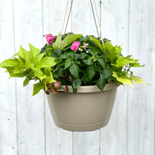 Load image into Gallery viewer, Hanging Basket- Impatiens & Coleus