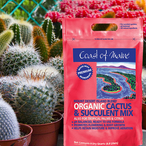 Coast of Maine® Cactus & Succulent Soil