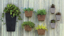 Load image into Gallery viewer, Artstone Wall Planter- Medium Rust