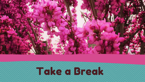 """A close up image of a red bud tree's flowers in a bright pink.  There is a pink line at the bottom of the flower picture, then a teal background below with the words """"Take a Break""""."""