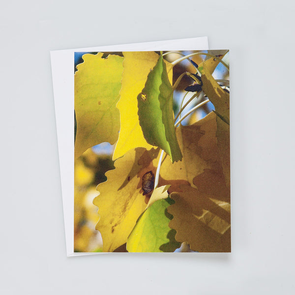 A2 Flat Card: Yellow Leaves