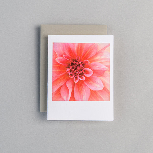 A2 Folded Card - stunning pink