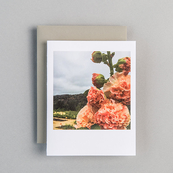 A2 Folded Card - california beauty
