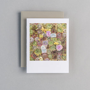 A2 Folded Card - mini succulents