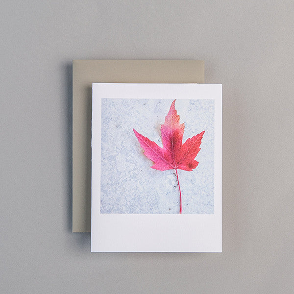 A2 Folded Card - red leaf