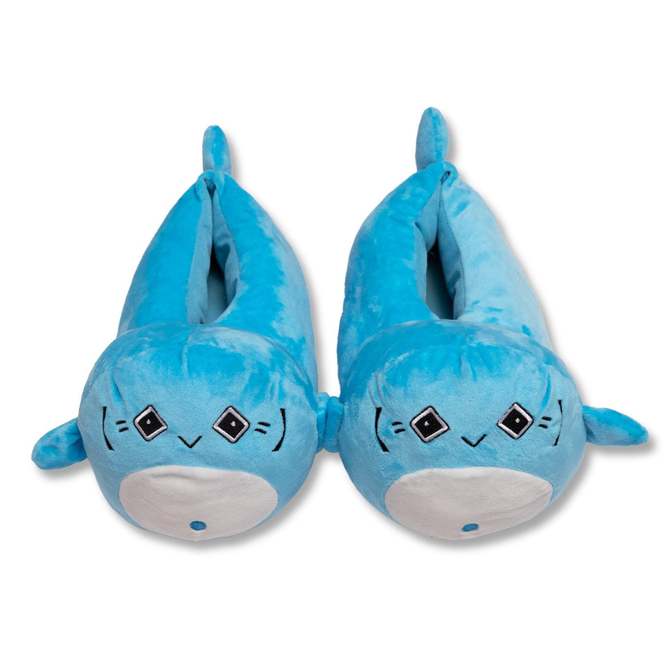 Potaro Slippers